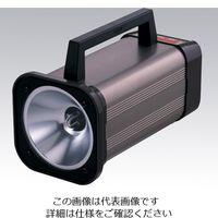 日本電産シンポ ストロボスコープ DT-315N 1台 2-7468-02 (直送品)