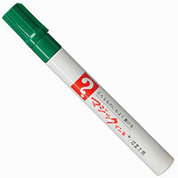 油性ペン マジックインキNo.500 細書き 緑 寺西化学工業 M500-T4