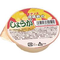 ホリカフーズ 栄養支援豆腐寄せ しょうが 560050 1箱(36個入) (取寄品)