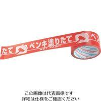 ダイヤテックス(DIATEX) パイオラン パイオラン表示テープ H06PN 1個 305-8247 (直送品)