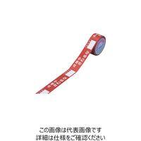 日本緑十字社 スイッチング禁止テープ 点検中・さわるな・責任者○○ 30mm幅×20m 087004 1巻(20m) 281-5818 (直送品)