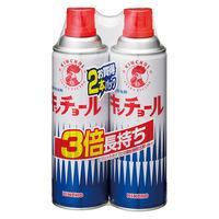 キンチョール ハエ・蚊殺虫剤スプレー 450mL 2本パック 大日本除虫菊