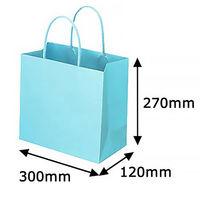 レザートーン手提袋 丸紐 アクアブルー L 1袋(10枚入) スーパーバッグ