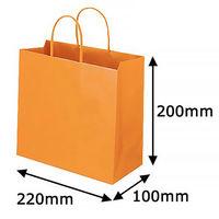 レザートーン手提袋 丸紐 マンダリン M 1袋(10枚入) スーパーバッグ