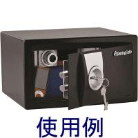 セントリー クラシカルキー式セキュリティ保管庫 X031 (直送品)