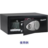 セントリー テンキー式セキュリティ保管庫 X075 (直送品)