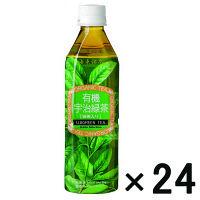 【アウトレット】海東ブラザーズ 有機宇治緑茶 500ml 1箱(24本入)