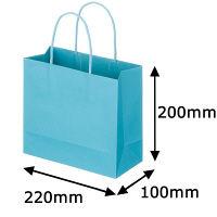 レザートーン手提袋 丸紐 アクアブルー M 1セット(50枚:10枚入×5袋) スーパーバッグ