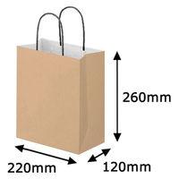 リバーシブルペーパー手提げ 丸紐 茶 S 1セット(50枚:10枚入×5袋) スーパーバッグ