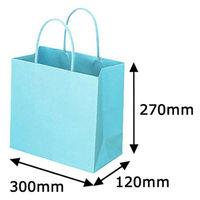 レザートーン手提袋 丸紐 アクアブルー L 1セット(50枚:10枚入×5袋) スーパーバッグ