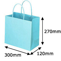 レザートーン手提袋 丸紐 アクアブルー L 1箱(300枚:10枚入×30袋) スーパーバッグ