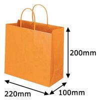 レザートーン手提袋 丸紐 マンダリン M 1セット(50枚:10枚入×5袋) スーパーバッグ