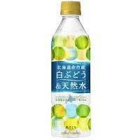 ポッカサッポロ 北海道余市産白ぶどう&天然水 500ml 1箱(24本入)