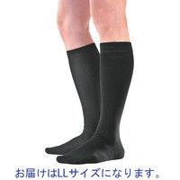 アルケア アンシルク・2 ソックス LL 20111 1足(2本)