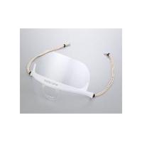 アズワン マスケアマスク 透明衛生タイプ MSK-3 1個 2-8829-01 (直送品)