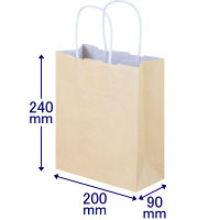 丸紐 手提げ紙袋 SS 300枚