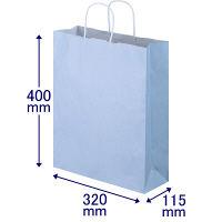 手提げ紙袋 丸紐 パステルカラー 水色 L 1パック(3箱計900枚) スーパーバッグ