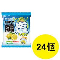 ぷるんと蒟蒻ゼリー パウチ 塩レモン 1セット(24個入) オリヒロプランデュ 栄養補助ゼリー