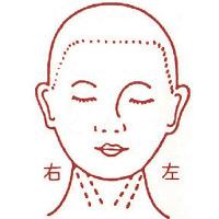 サンビー 人体図ゴム印 女性顔41 JING-41 (取寄品)