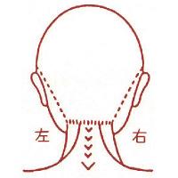 サンビー 人体図ゴム印 女性顔42 JING-42 (取寄品)