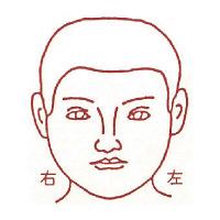サンビー 人体図ゴム印 男性顔43 JING-43 (取寄品)