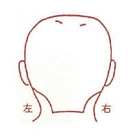 サンビー 人体図ゴム印 男性顔44 JING-44 (取寄品)