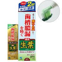 生葉 (しょうよう) 歯槽膿漏を防ぐ 薬用ハミガキ ハーブミント味 100g+生葉EX10g付き 小林製薬 歯磨き粉