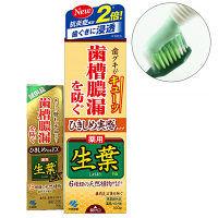 ひきしめ生葉(しょうよう) 歯槽膿漏を防ぐ 薬用ハミガキ ハーブミント味 100g+生葉EX10g付き 小林製薬 歯磨き粉