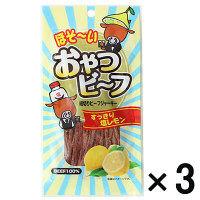 【アウトレット】石垣食品 おやつビーフ すっきり塩レモン味 1セット(10g×3袋)