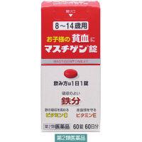 【第2類医薬品】マスチゲン錠 8~14歳用 60錠 日本臓器製薬