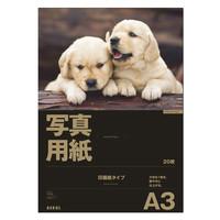 アスクル 写真用インクジェット用紙 印画紙タイプ A3 1袋(20枚入)