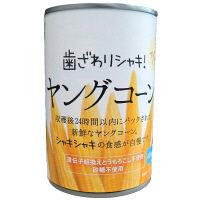 富士貿易 サニーファーム ヤングコーン 420g 1個