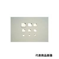 新光電子 板状基準分銅型(非磁性ステンレス) F2PSB-200M 1個 (直送品)