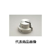 新光電子 増おもり型分銅(非磁性ステンレス) F2SS-100G 1個 (直送品)