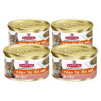 サイエンス・ダイエット キャットフード アダルト サーモン 成猫用 82g 1セット(4缶) 日本ヒルズ・コルゲート