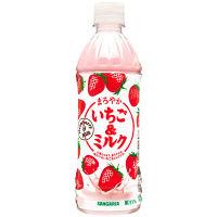 サンガリア まろやかいちご&ミルク 500ml 1箱(24本入)