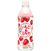 サンガリア まろやかいちご&ミルク 500ml 1セット(48本)