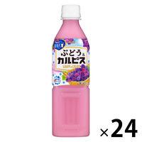 カルピス 味わう葡萄&「カルピス」 500ml 1箱(24本入)