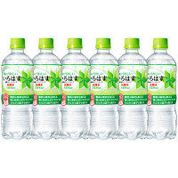 【機能性表示食品】コカ・コーラ いろはす 無糖スパークリング 515ml 1セット(6本)