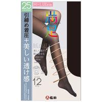 満足 25D シアータイツM-L 福助