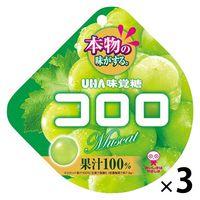 味覚糖 コロロ マスカット 1セット(3袋入)