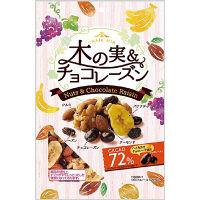 共立食品 木の実&チョコレーズン(トレイルミックス)徳用 140g 1袋