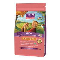 HALO(ハロー) ドッグフード パピー 子犬/妊娠・搾乳期の母犬用 小粒 ヘルシーチキン 900g 1袋 ベッツ・チョイス・ジャパン