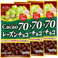 正栄デリシィ カカオ70レーズンチョコ 1セット(3袋入)