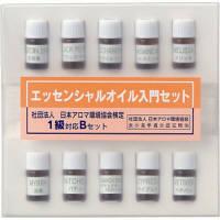生活の木 エッセンシャルオイル エッセンシャルオイル入門検定1級 Bセット 08-446-9010 (直送品)