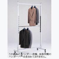 河淳 ワイドハンガーラック20 BA197 (直送品)