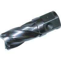 大見工業 大見 25SQハイスカッター 22.0mm HCSQ220 1本 248ー3211 (直送品)