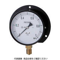 右下精器製造 スター (圧力計) S-42-0.6MP 1個 308-3870 (直送品)