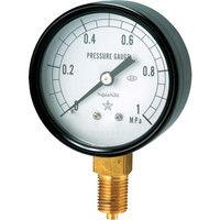 右下精器製造 一般圧力計 G211-111-V-0.1MP 1個 325-9471 (直送品)