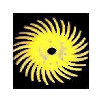 スリーエム ジャパン(3M) ラジアル・ブリッスルディスク #400相当 青 14.3mm BR DISC 400 9/16 311-1148 (直送品)